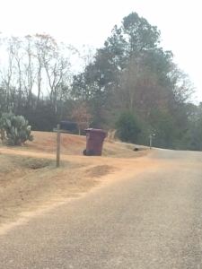 Salmon mailbox left 12.19.14